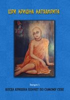 Шри Кришна-катхамрита. 1: Когда Кришна плачет по Самому Себе